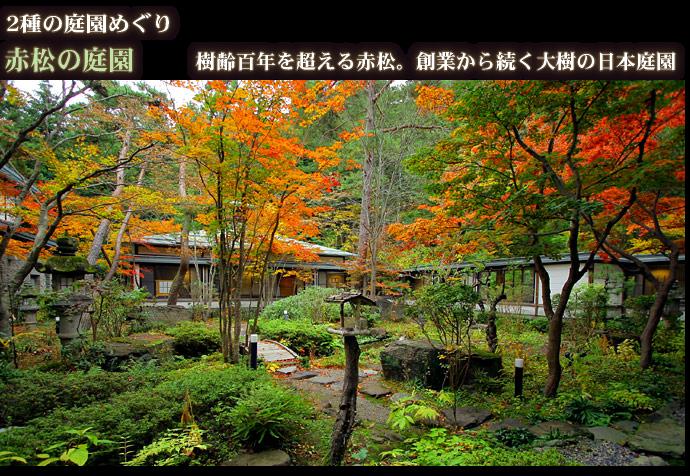 赤松の庭園