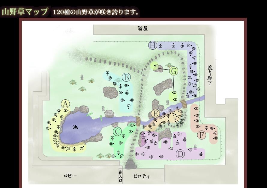 山野草マップ